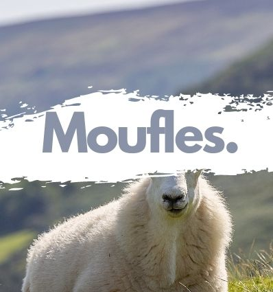 Moufles en Mouton